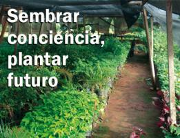 Sembrar conciencia, plantar futuro