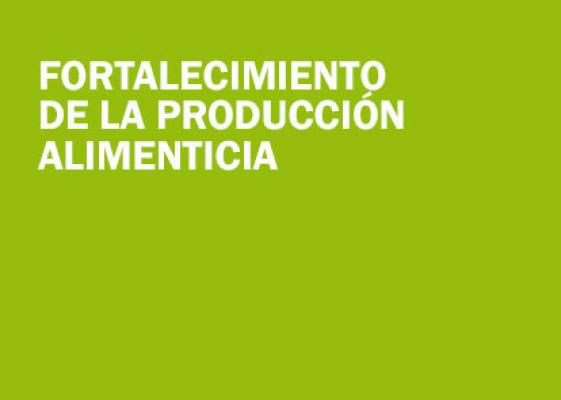 Fortalecimiento de la producción alimenticia